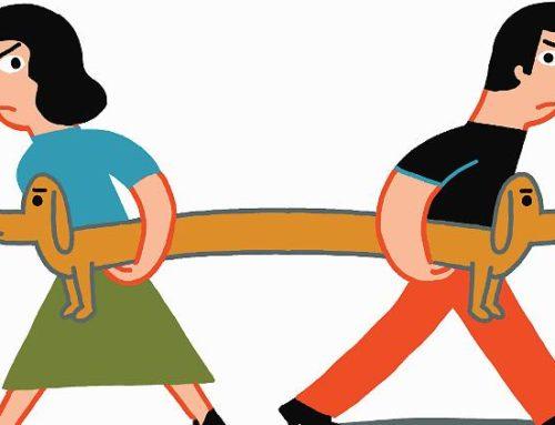 Ex-Ehegatte verklagen